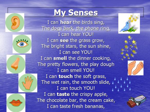 senses 1