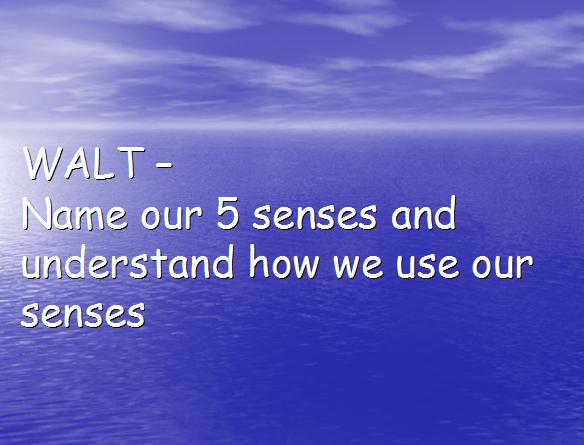 senses 2