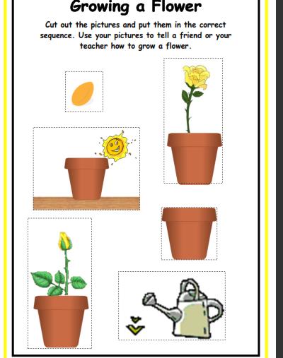 plants19